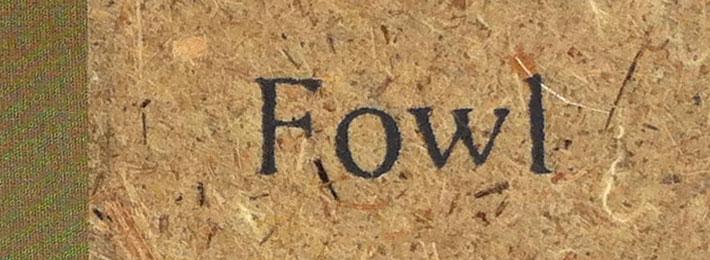 Fowl: a handbound book